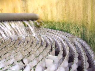 Hiệu quả rõ ràng trong việc phòng chống tảo nước (trước khi lắp đặt)